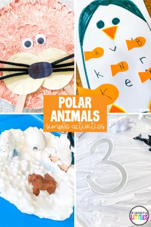 polar-animal-activities