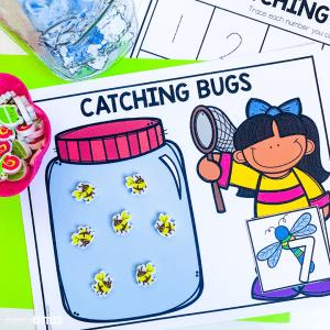 bug math center