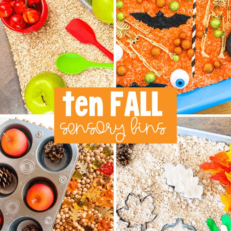10 fall sensory bin ideas