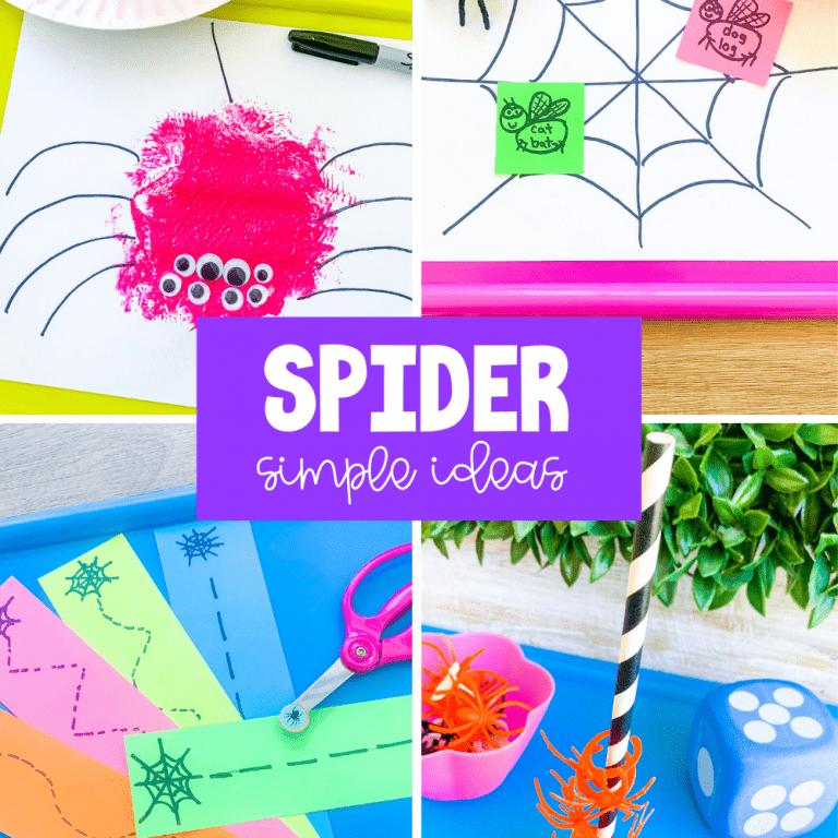 preschool spider theme